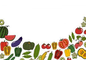 夏野菜セット(カラー2)
